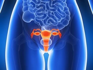 Benessere Femminile vaginite_NG1 Vaginite: cause, sintomi e cure