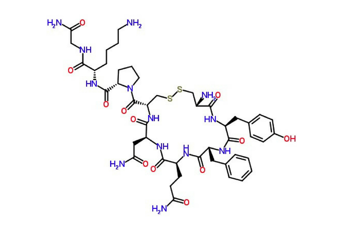 Benessere Femminile Progetto-senza-titolo-3 La vasopressina: l'ormone antidiuretico