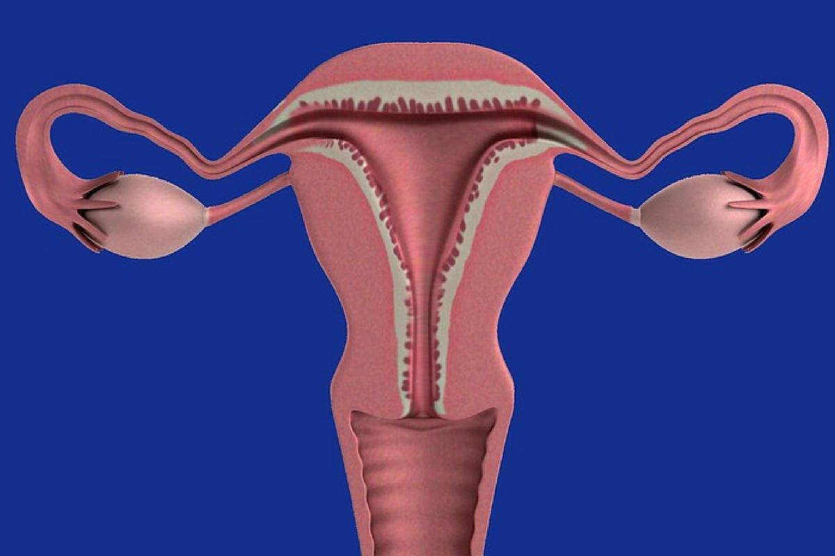 Benessere Femminile Progetto-senza-titolo Che cos'è la fase luteale?